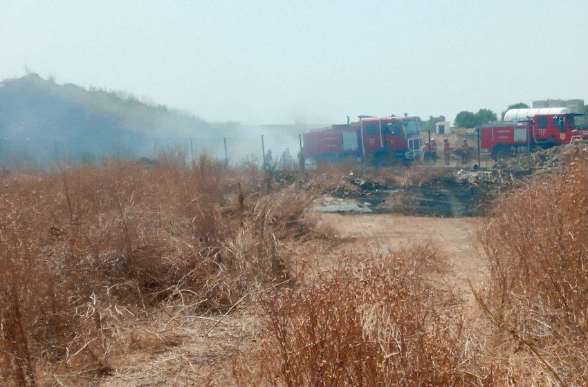 Incêndio em Reguengos de Monsaraz