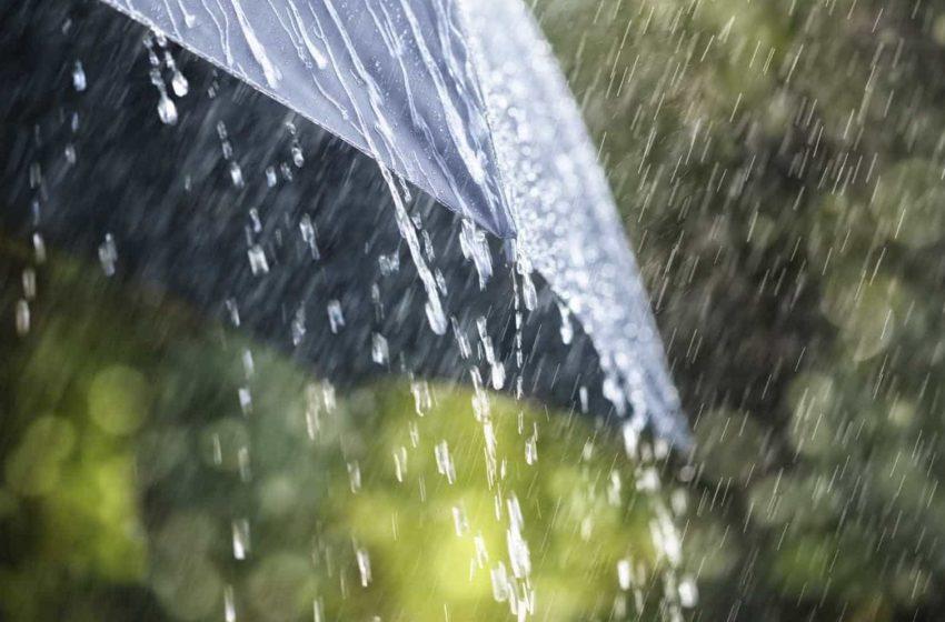 Há quase vinte anos que não chovia tanto em Reguengos